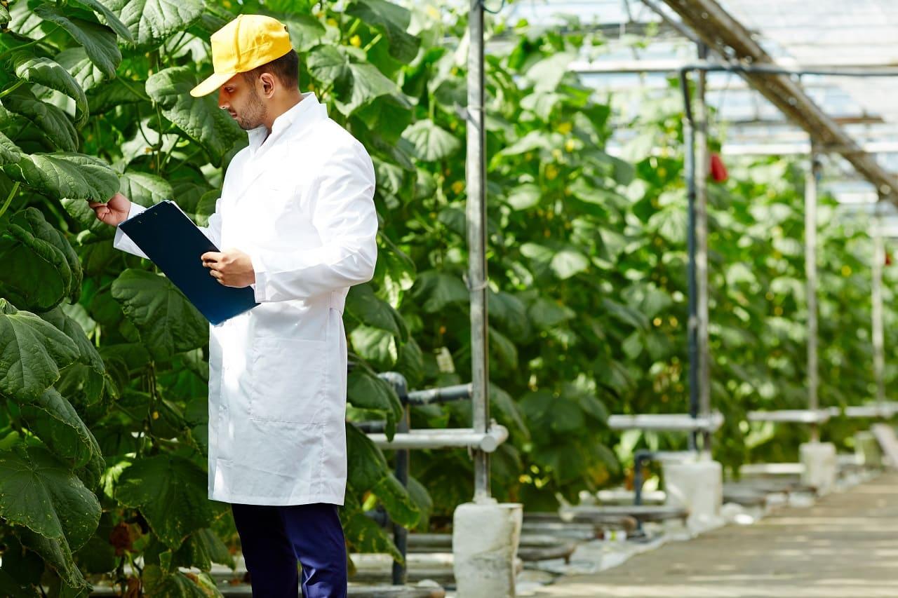 Polaris Farm vuelve a ser reconocido por el Proyecto DIVA